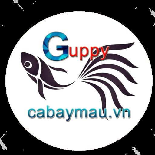 cabaymau.vn